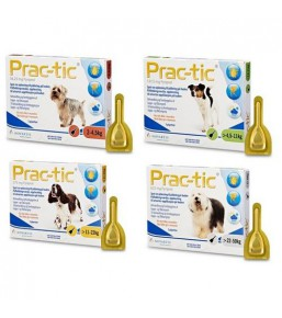 Prac-tic for dogs