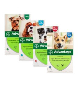 Advantage Dog - Anti-flea pipettes