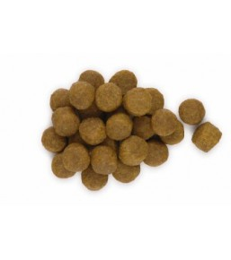 Hill's Science Plan Canine Adult Sensitive Stomach - Dog kibbles