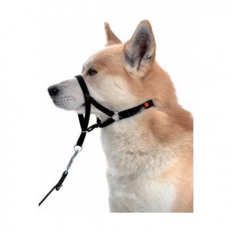 Halti - no pull headcollar for dogs