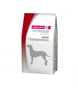 Eukanuba Veterinary Diets Intestinal Chien - Croquettes