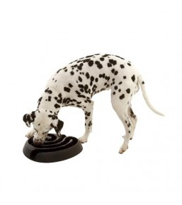 Buster DogMaze - Food maze dish for dogs