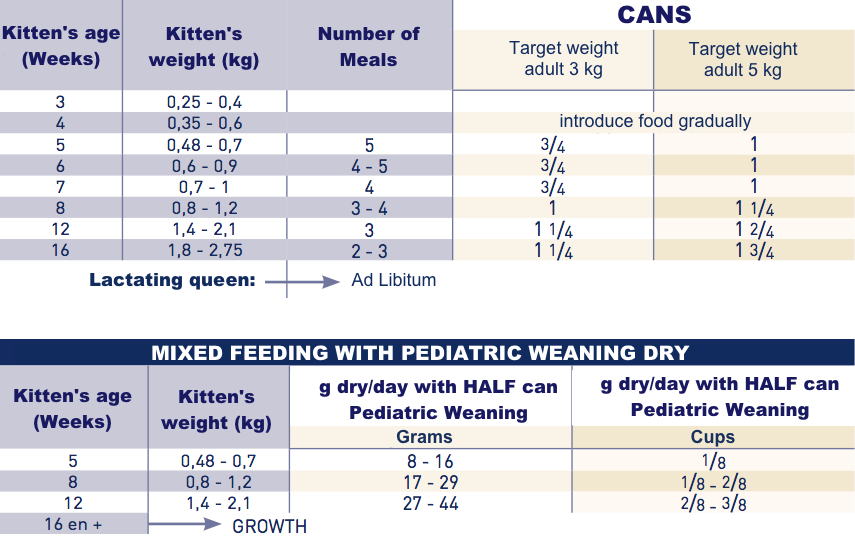 Royal Canin Pediatric Weaning Wet food for kitten